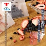 《北海道産》無添加ドライフルーツ ~イチゴ×ブルーベリー~