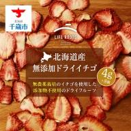 《北海道産》無添加ドライイチゴ