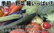 010012. 【環境王国こまつの恵み】季節の野菜詰合せ