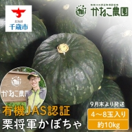 【2021年9月下旬発送】無農薬栽培!栗将軍かぼちゃ 6玉入り(約10kg)【かねこ農園】