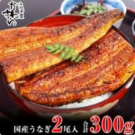 247.【うなぎ屋かわすい】国産うなぎ蒲焼き大サイズ2本セット