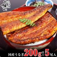 489.【うなぎ屋かわすい】超特大サイズ国産うなぎ蒲焼きセット(5本合計1kg)
