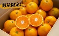 【10月~11月中旬】温州ゆら早生 みかん5kg
