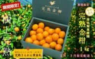 <2021年1月下旬より発送>【鹿児島県南さつま市産】完熟金柑 黄金丸1kg(3L~4L)