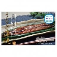 19-012.四万十川優化イオンうなぎ蒲焼5尾(ボイル肝、たれ付き)
