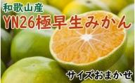 ZD92024_【先行予約】【産直】YN26極早生みかん約5kg(2S~Mサイズおまかせ)