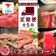 【頒布会・毎月お届け!】肉の山本 バラエティコース全5回