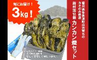 (予約受付中:旬にお届け!2021年1月から期間限定出荷!)多度津白方 殻付活牡蛎カンカン焼セット3kg(加熱用)【H-1】