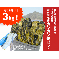 【H−1】(予約受付中:旬にお届け!2020年1月から4月までの期間限定出荷!)多度津白方 殻付活牡蛎カンカン焼セット3kg(加熱用)