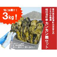 【H-1】(予約受付中:旬にお届け!2019年3月からの期間限定出荷!)多度津白方 殻付活牡蛎カンカン焼セット3kg(加熱用)