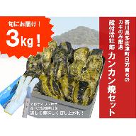 【H-1】(予約受付中:旬にお届け!2019年2月からの期間限定出荷!)多度津白方 殻付活牡蛎カンカン焼セット3kg(加熱用)