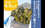 (予約受付中:旬にお届け!2021年1月から期間限定出荷!)殻付活牡蛎カンカン焼セット 4.5kg (加熱用)【B-7】