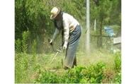空き家、空き地の草刈サービス(年2回)