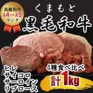 N66 熊本県産黒毛和牛(A4/A5)ランク ステーキ4種 食べ比べ 合計約1000g(サーロイン約250g ヒレ約250g リブロース約250g サイコロステーキ約250g)