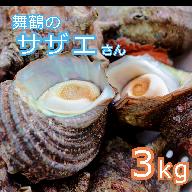 【ふるさと納税】海の街 舞鶴のササエさん 3kg