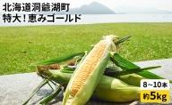 もぎたて!北海道洞爺湖町 塩田農園の恵みゴールド約5kg