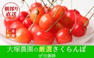 大塚農園のさくらんぼ【佐藤錦】800g(200g×4)