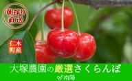 大塚農園のさくらんぼ【南陽】800g(200g×4)