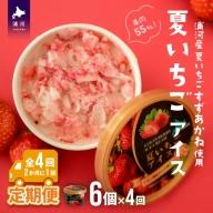 果肉55%「夏いちごアイス(6個)」北海道のいちご農家の贈り物【全4回定期便】[B22-997]