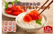 【A-591】春ばあちゃんの辛子明太子 切れ子 1.2kg