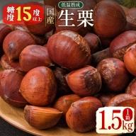 宮崎県産 低温熟成 生栗 1.5kg【B504】