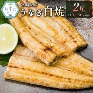 <お中元対応>鰻の白焼き 2尾(110~150g)【N21】
