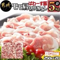 「ぱわーす豚」モモ肩切り落とし5kg_MJ-6409