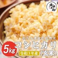21-854.【令和3年産 新米・早期受付】四万十清流の自然米 玄米5kg【コシヒカリ】