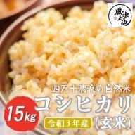 21-856.【令和3年産 新米・早期受付】四万十清流の自然米 玄米15kg【コシヒカリ】