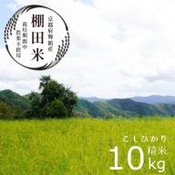 【ふるさと納税】棚田米10kg コシヒカリ こしひかり 無農薬栽培米 令和2年産 令和3年産