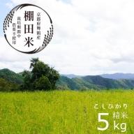 【ふるさと納税】棚田米5kg コシヒカリ こしひかり 無農薬栽培米 令和2年産 令和3年産新米受付