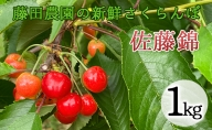 藤田農園のさくらんぼ【佐藤錦】1kg(500g×2)