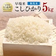 【※令和3年産※】☆早場米☆こしひかり(無洗米)5kg