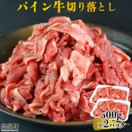 <パイン牛切り落とし 500g×2>
