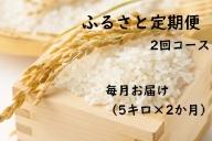 【2ヶ月連続お届け】IKUSAKAのお米 5kg こしひかり