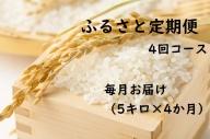 【4ヶ月連続お届け】IKUSAKAのお米 5kg こしひかり