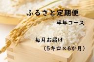 【6ヶ月連続お届け】IKUSAKAのお米 5kg こしひかり