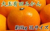 【食べごたえ十分】有田みかん大玉約9kg(3Lサイズ・秀品) ※2021年11月中旬~2022年1月下旬頃に発送予定(お届け日指定不可)