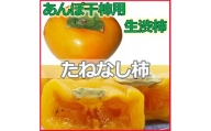 <2021年秋発送>【県認定エコファーマー】あんぽ柿用生渋柿(平たねなし柿) 約15kg 54~72個