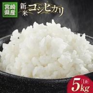新米コシヒカリ(5kg)[宮崎県新富町産]【A152】