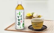 【3ヶ月連続お届け】美濃いび茶(抹茶入り)500ml 1ケース24本入