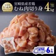 宮崎県産若鶏むね切身IQF250g×16袋【6ヶ月定期便】