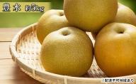 【馬場果樹園】梨「豊水」約5kg(10~14玉入)