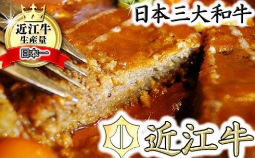 近江牛煮込みハンバーグ 自家製デミグラスソース 【1200g(200g×6個)】【DI01SM】