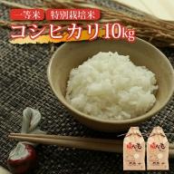 SA0877 令和2年産【精米】一等米 特別栽培米 コシヒカリ10kg(5kg×2袋) YA