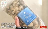 北海道サロマ湖産 わた雪牡蠣(むき身)1kg×2