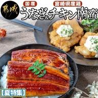 【夏特集】国産うなぎ2尾&チキン南蛮_AC-9208-OJ