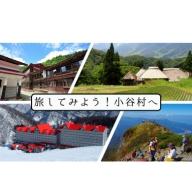 小谷村宿泊補助券5,000円分