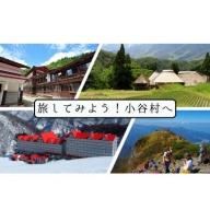 小谷村宿泊補助券30,000円分