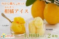 みかん職人が作った柑橘アイス1000ml×2種
